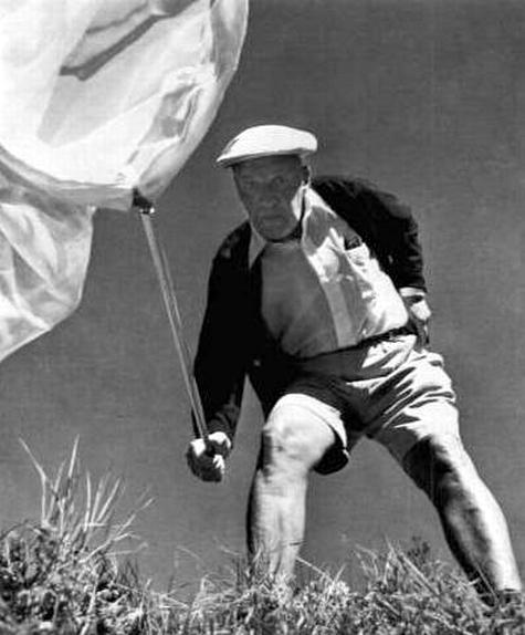Nabokov hunting butterflies
